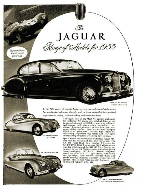 jaguarfor1955